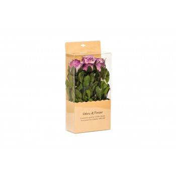 Розы стабилизированные в коробке (фиолетовые) 34JN-171