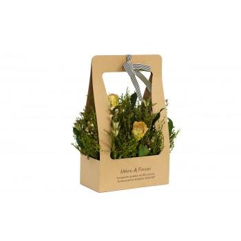 Розы кремовые стабилизированные в коробке 34JN-185