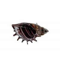Статуэтка «Ракушка» янтарная F7478