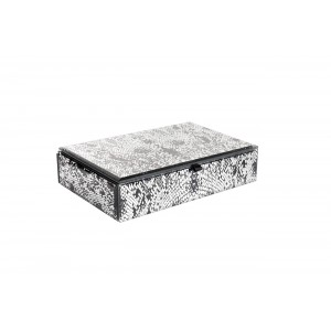 Шкатулка стеклянная «Кобра» KFJ225
