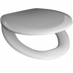 Крышка-сиденье для унитаза Roca Mateo ZRU9302822