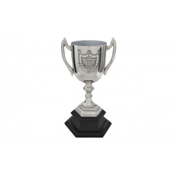 Кубок наградной IK44917