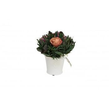 Розовые розы стабилизированные в горшке 34JN-099