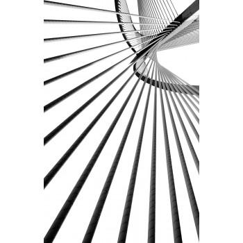 """Постер """"Черное и белое"""" 54STR-BLACKWHITE3"""