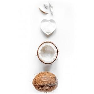 """Постер """"Композиция с кокосом"""" 54STR-COCONUT"""