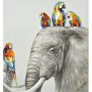 Картина попугаи и слон Kare Ob55507